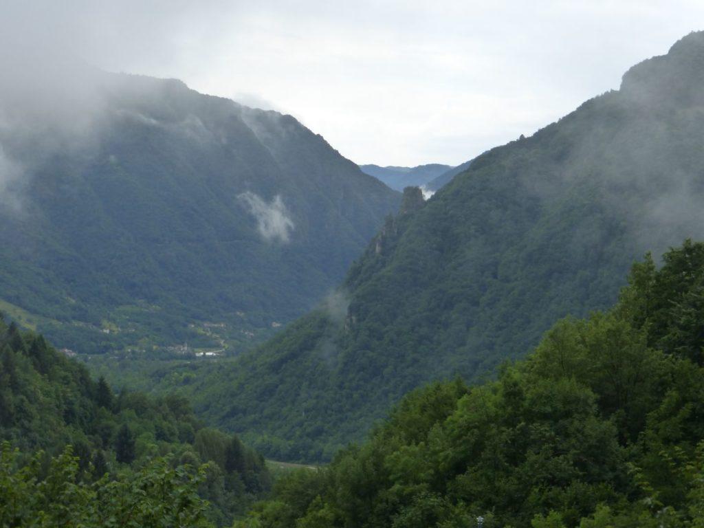 Il rigoglioso verdeggiar dell'estate - Gaia Erbe